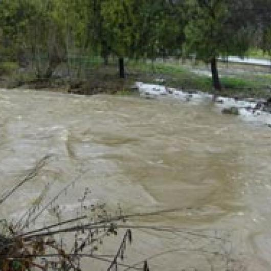 York Creek during a small flood
