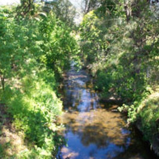 Creek on Asti Ranch
