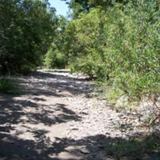 Dry Creek adjacent to Page Nord Vineyard