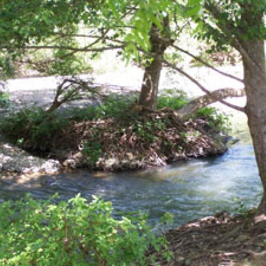 Confluence of Wine Creek and Dry Creek