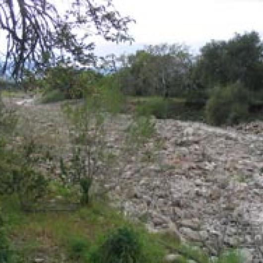 Rector Creek alluvial fan adjacent to  Paraduxx Winery and vineyard.