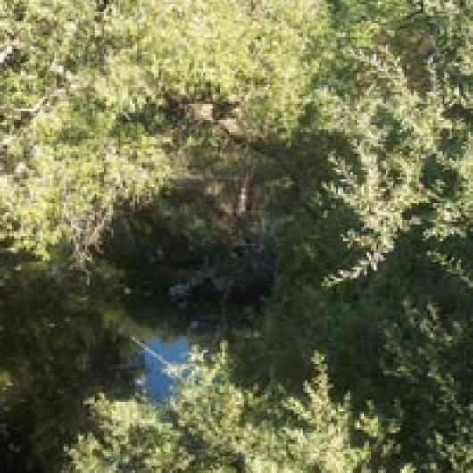 Both the Napa River and Selby Creek flow through the large Calistoga Ranch site.