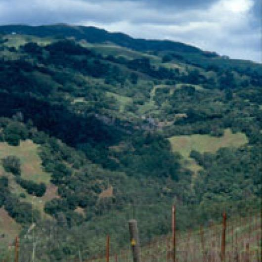 View of the Rockaway Creek watershed from Rockaway Ranch
