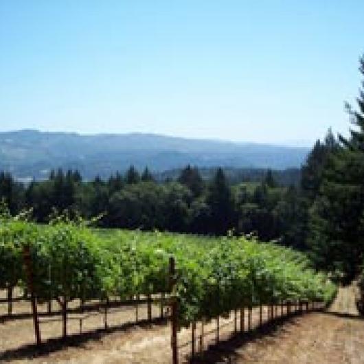 Schramsberg Estate Vineyard and Winery