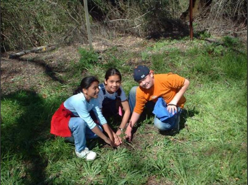 Students working with Circuit Rider Productions assist  with planting native seedlings on Simi Vineyard (photo courtesy of Simi Vineyards)