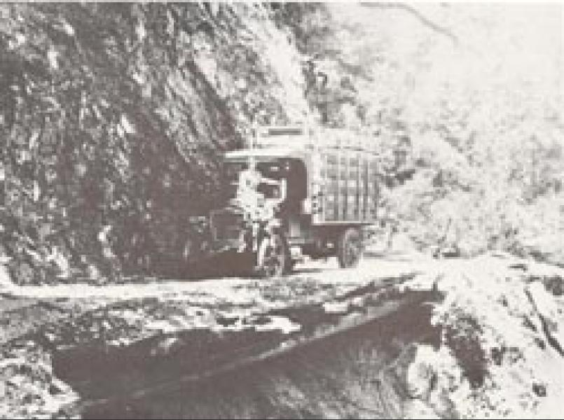 Hauling apples over Skaggs Spring Road in 1922.