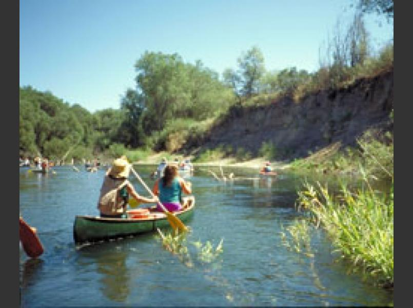 Canoeists in the Russian River Valley. Note the tall vertical eroding banks.