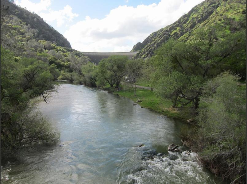 Putah Creek downstream of Monticello Dam