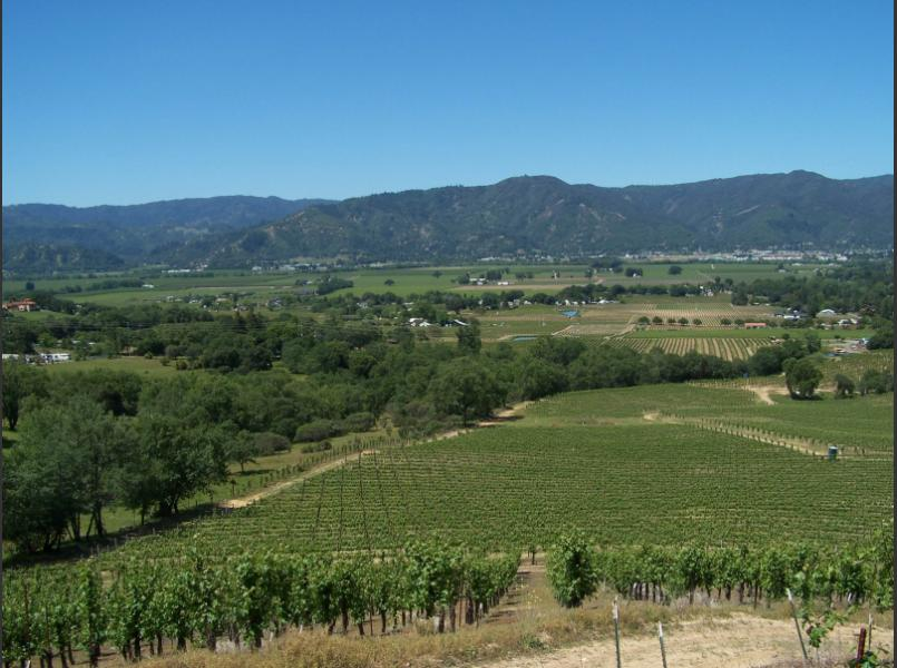 View of Ukiah Valley