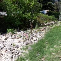 York Creek