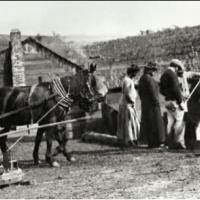 1880s on Montebello Ridge