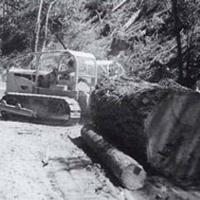 Tractor logging of the 1940s and 1950s
