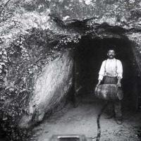 Images of the early years of the Napa wine industry