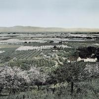 Santa Clara Valley Agriculture Prior to Urban Growth