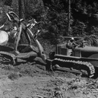 1960's widespread clear-cut logging using tractors