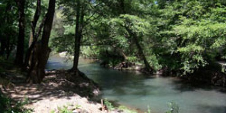 Dry Creek with summer water release from Warm Springs dam