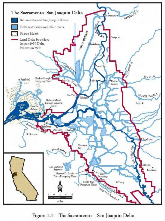 The Sacramento-San Joaquin Delta